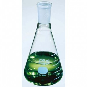 Fisher 10-047 Series Erlenmeyer Flask with standard taper joint